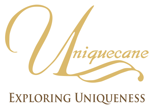 UNIQUECANE – Exploring Uniqueness